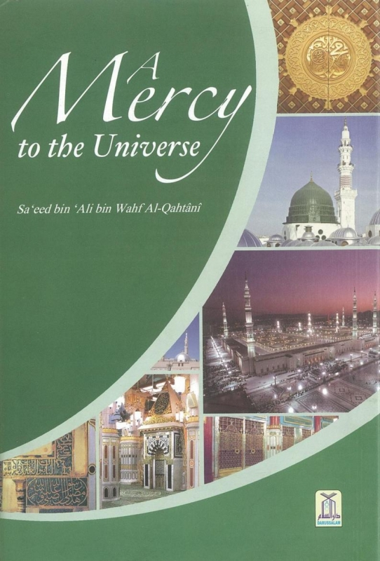 A Mercy to the Universe (Hardback)