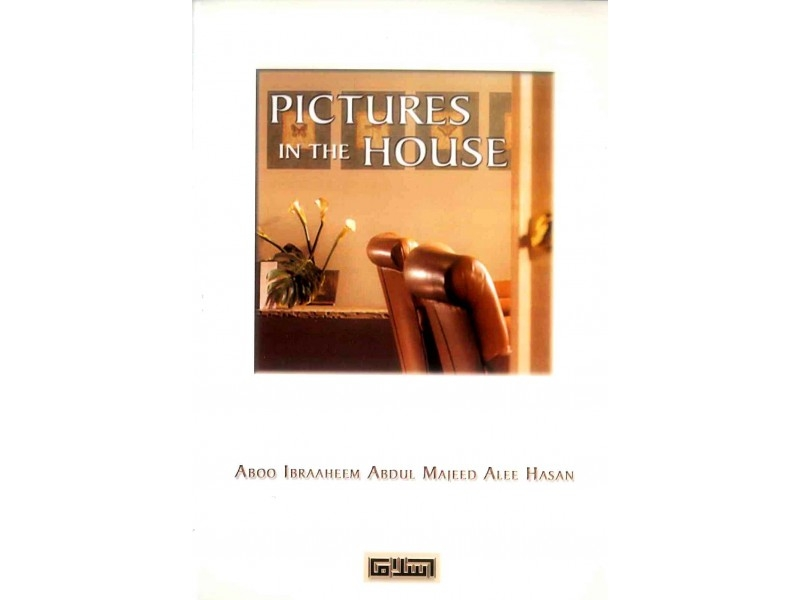 Pictures in the House (Paperback)